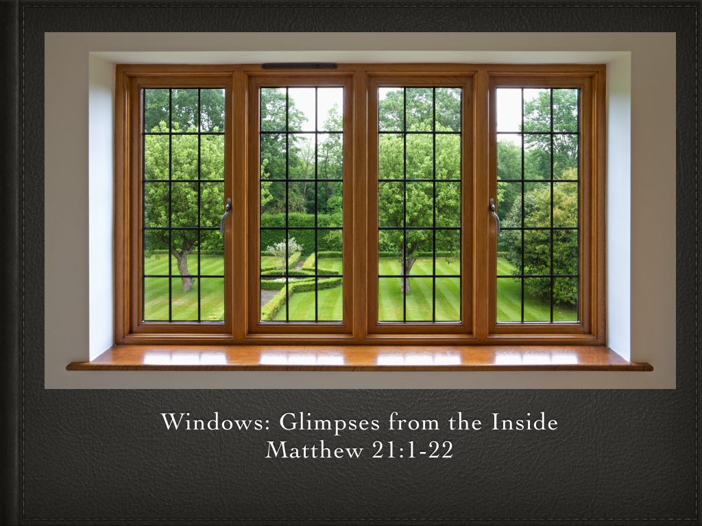 Windows: Glimpses from the Inside
